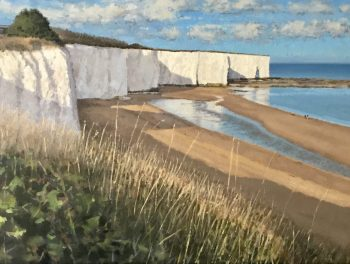 Walking the Dog – Kingsgate Bay